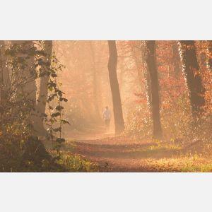 Jak trenować w chłodniejsze dni? Poznaj bluzy i spodnie dresowe na jesień